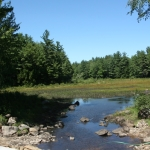 Cocheco River Headwaters after water diversion removal